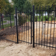 fences-001